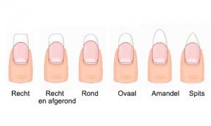 vormen nagels wit